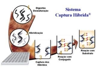 captura-hibrida